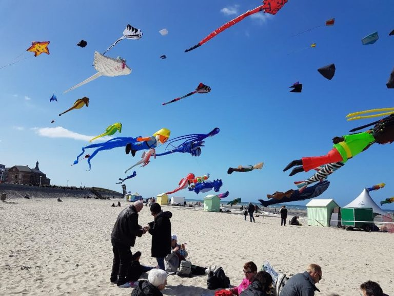 Rencontres internationales des cerfs-volants à Berck-sur-Mer